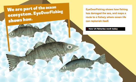 Welcome to EyeOverFishing.org.jpg